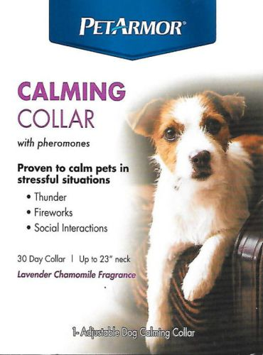 Calming Collar Dog.jpg